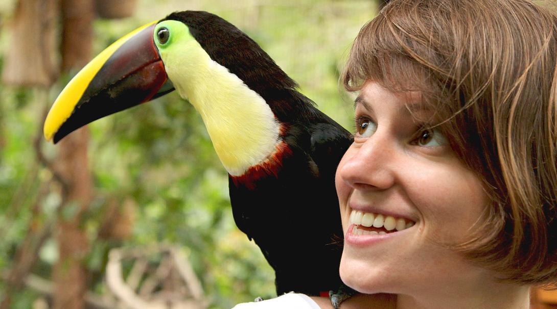 Une volontaire ébahie par la beauté d'un toucan sur son épaule dans le parc national Barra Honda au Costa Rica.